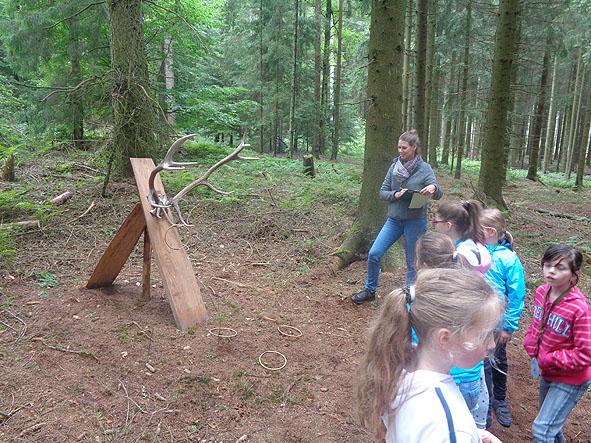 Waldjugendspiele014