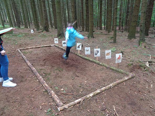 Waldjugendspiele015