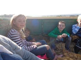 Kartoffeln2003
