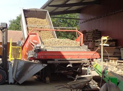 Kartoffeln3007